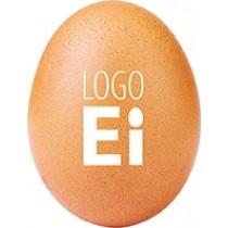 Logo Ei Bio