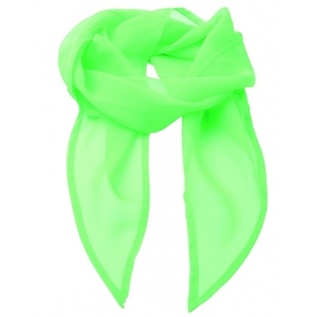 Women`s Colour Chiffon Scarf